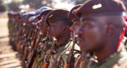 The Zimbabwe-Mozambique border conflict