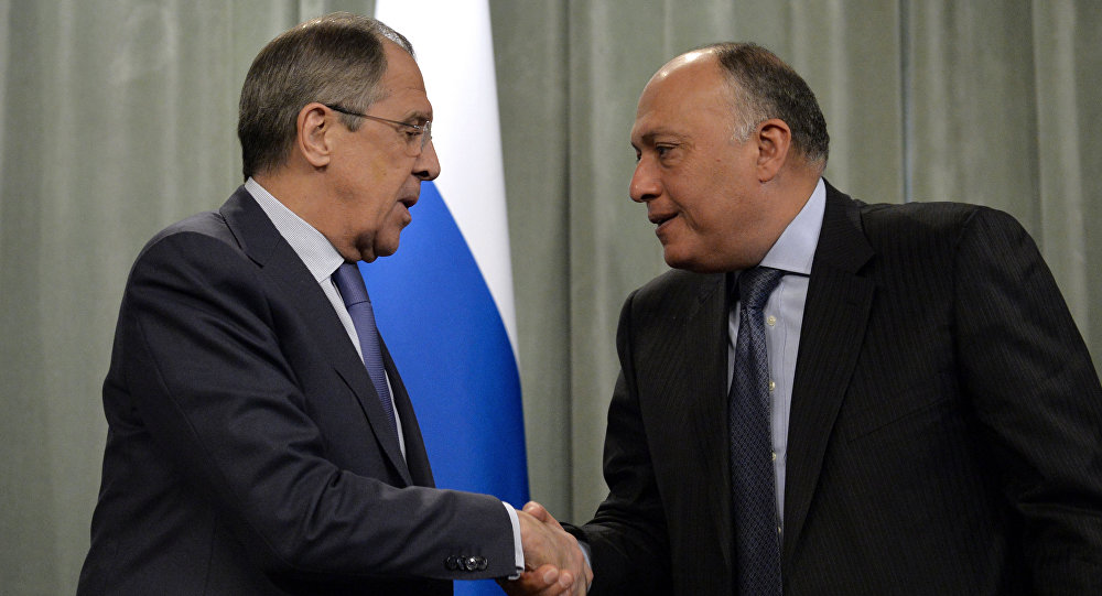 Egypt and Russia discuss fight against `terror`