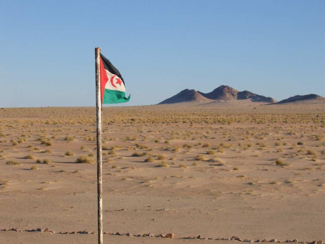 UN envoy to Western Sahara pushes for restart of peace talks