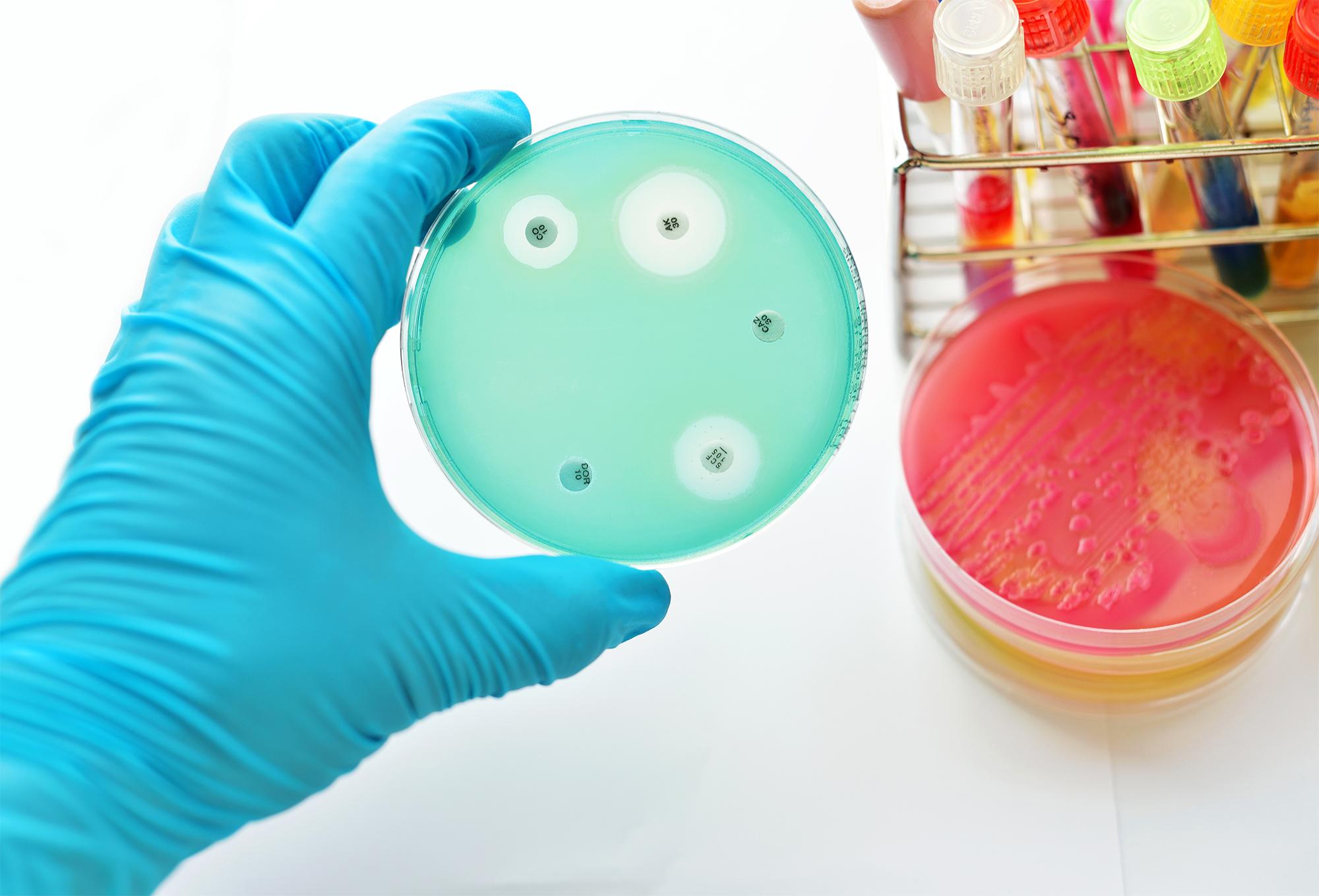 EU antibiotic resistant disease