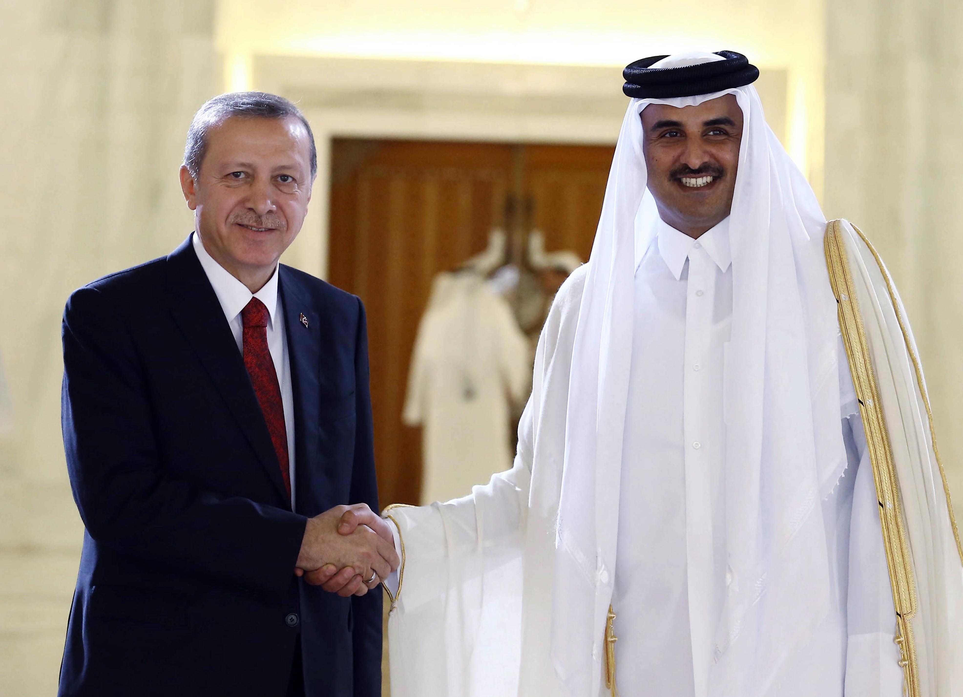 Recep Tayyip Erdogan, Tamim bin Hamad Al Thani